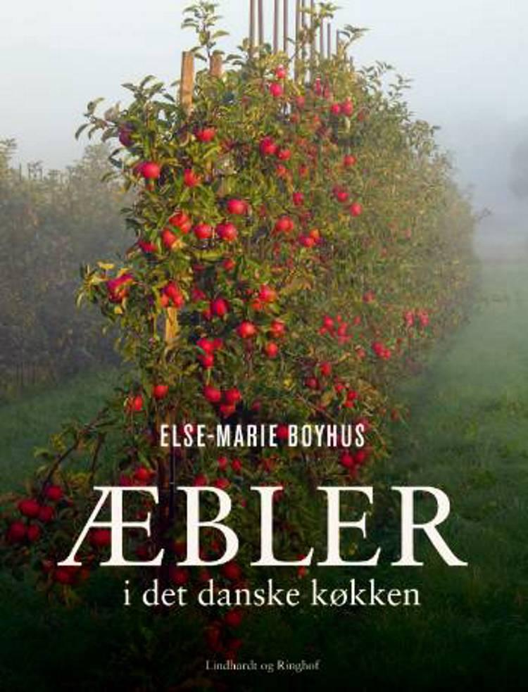 Æbler i det danske køkken af Else-Marie Boyhus