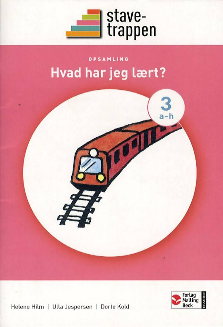 Stavetrappen 3 Hvad har jeg lært? - opsamling af Helene Hilm Ulla Jespersen Dorte Kold