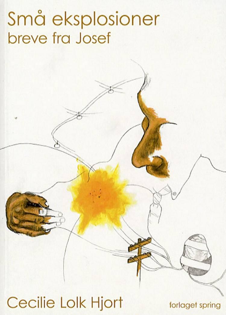 Små eksplosioner af Cecilie Lolk Hjort