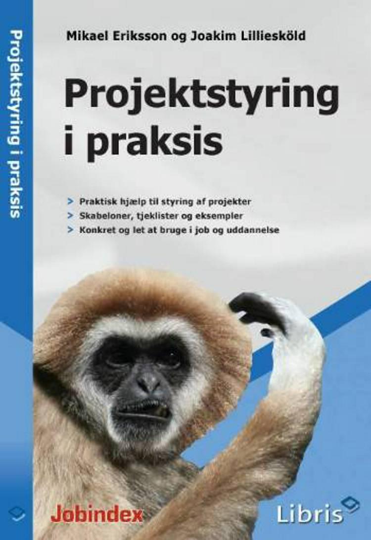 Projektstyring i praksis af Mikael Eriksson og Joakim Lilliesköld