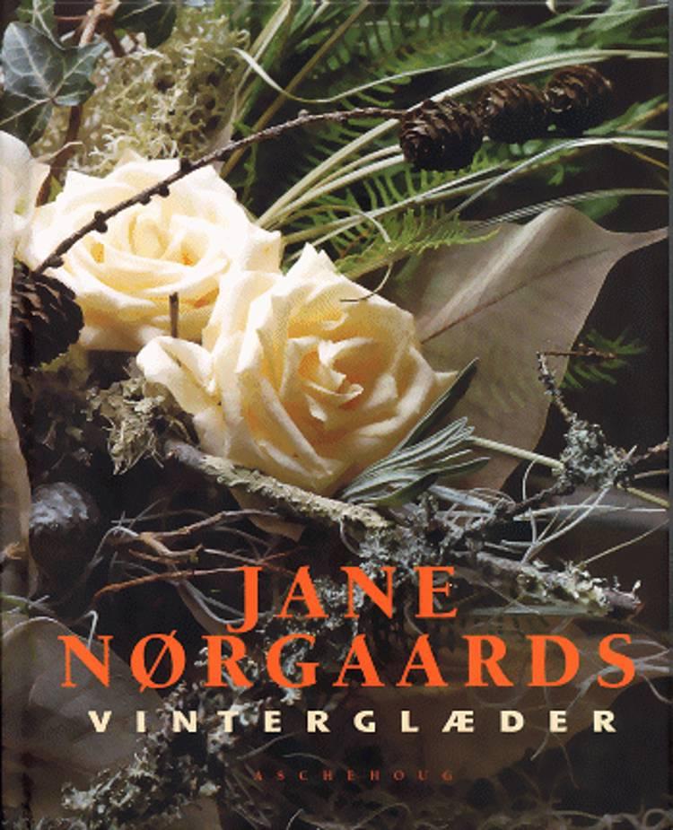 Jane Nørgaards vinterglæder af Dorte Andersson