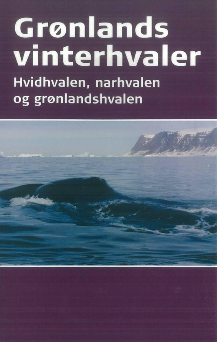 Grønlands vinterhvaler af Mads Peter Heide-Jørgensen og Kristin Laidre