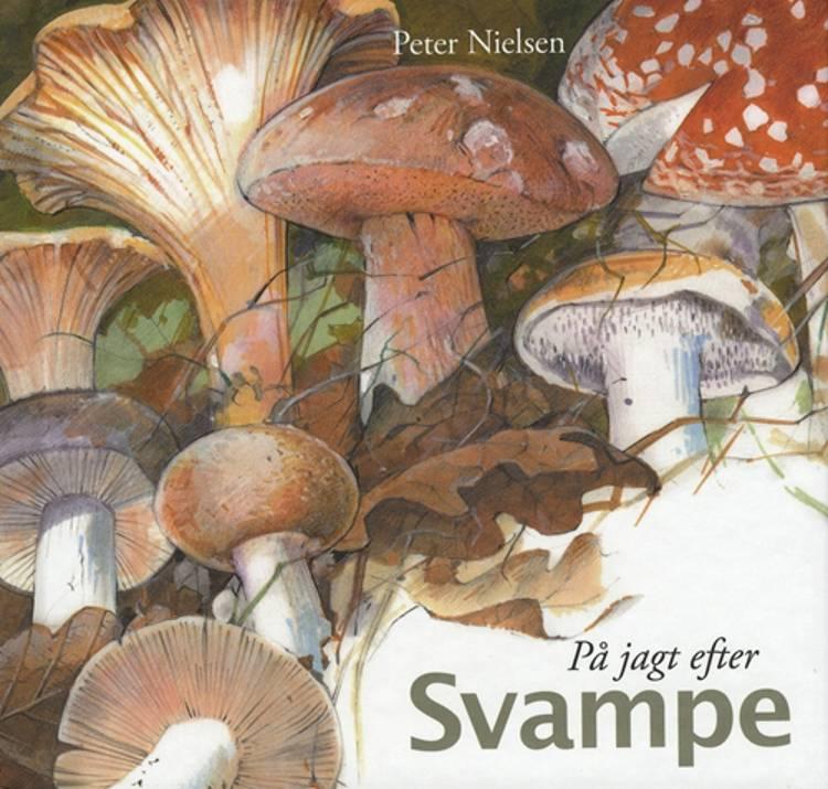 På jagt efter svampe af Peter Nielsen