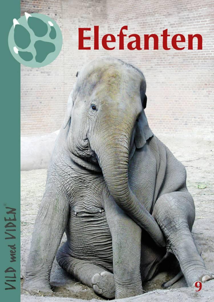 Elefanten af Bengt Holst