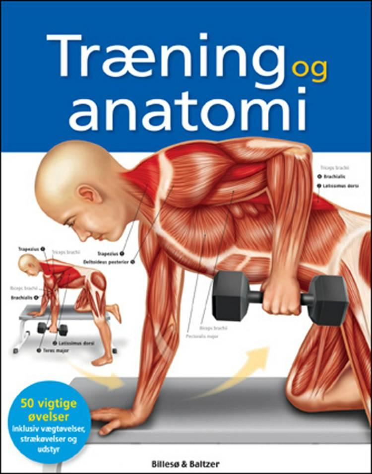 Træning og anatomi af Ken Ashwell m.fl.
