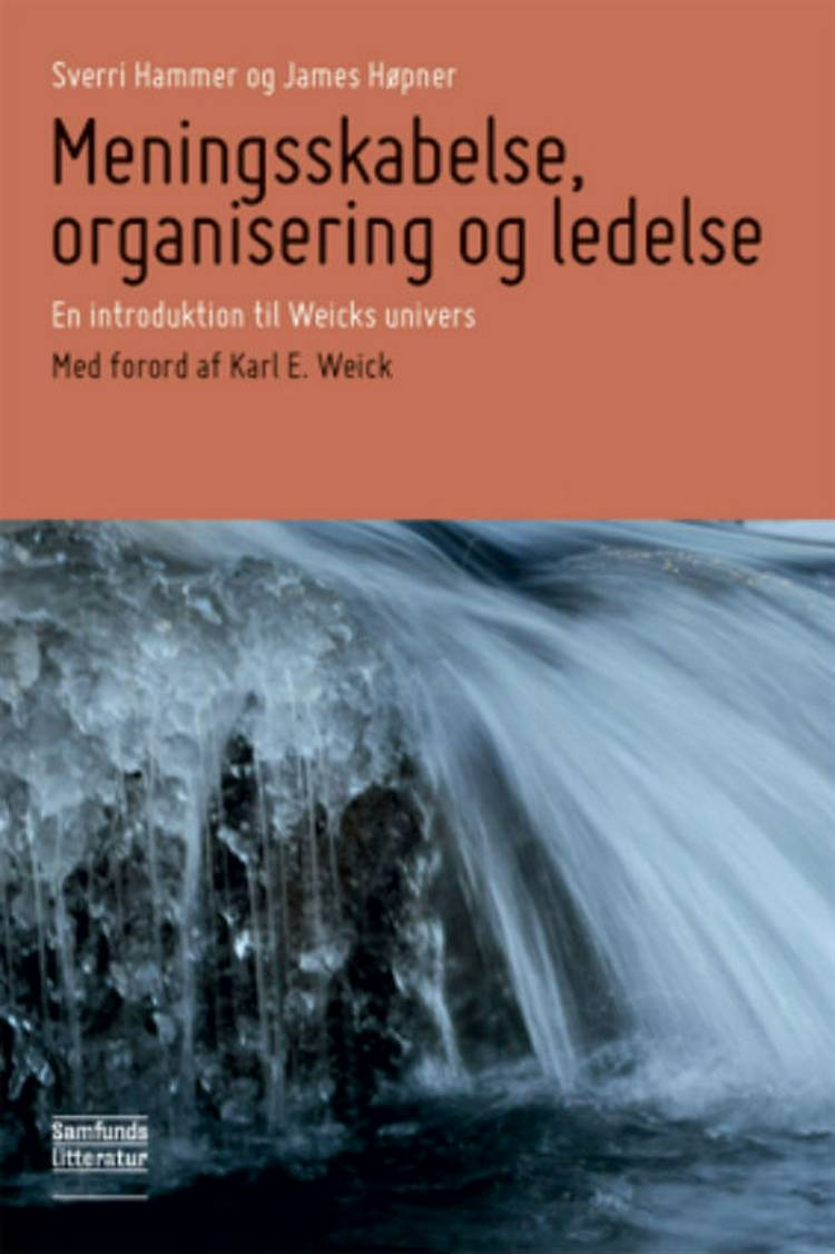 Meningsskabelse, organisering og ledelse af Sverri Hammer og James Høpner