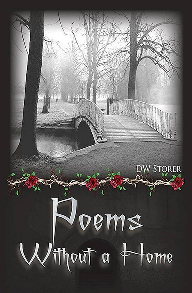 Poems without a home af Darren W. Storer