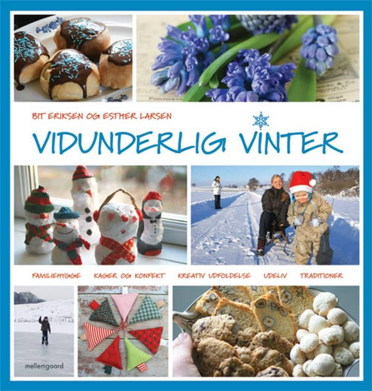 Vidunderlig vinter af Bit Eriksen ogEsther Larsen