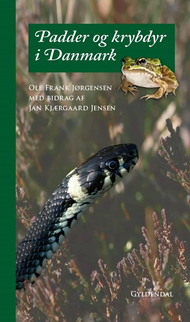 Padder og krybdyr i Danmark af Ole Frank Jørgensen