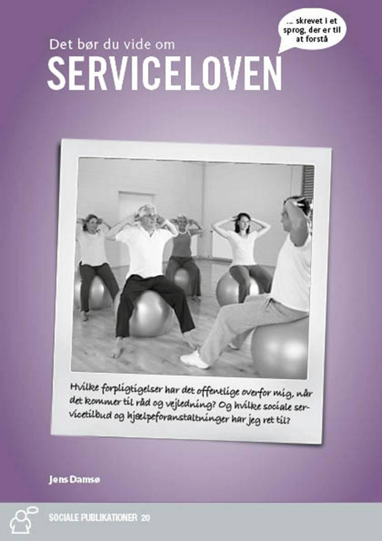 Serviceloven i Praksis af Jens Damsø