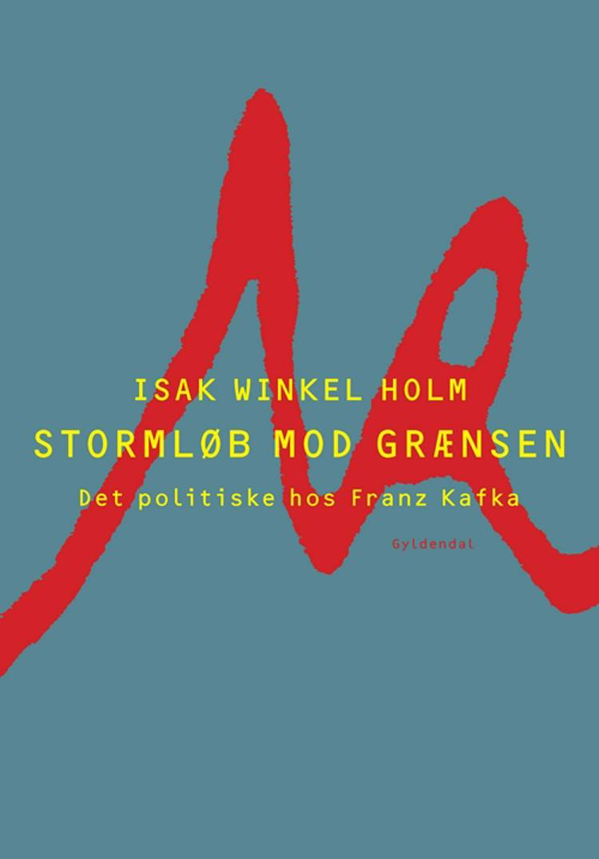 Stormløb mod grænsen af Isak Winkel Holm
