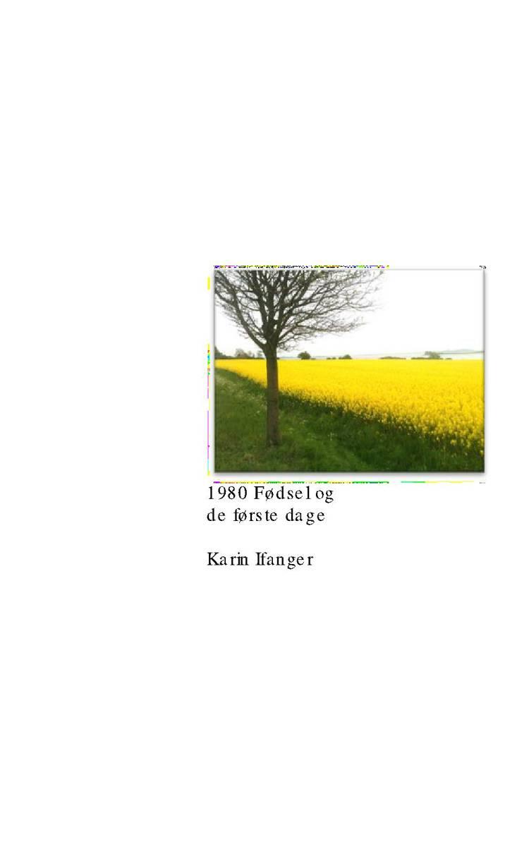 1980 Fødsel og de første dage af Karin Ifanger