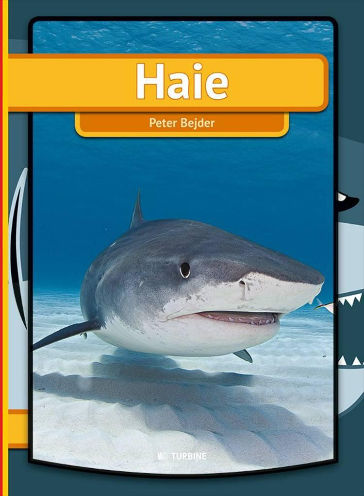 Haie af Peter Bejder